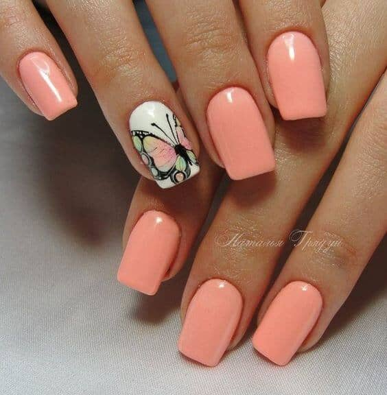 Pink and White with a Butterfly vvpretty