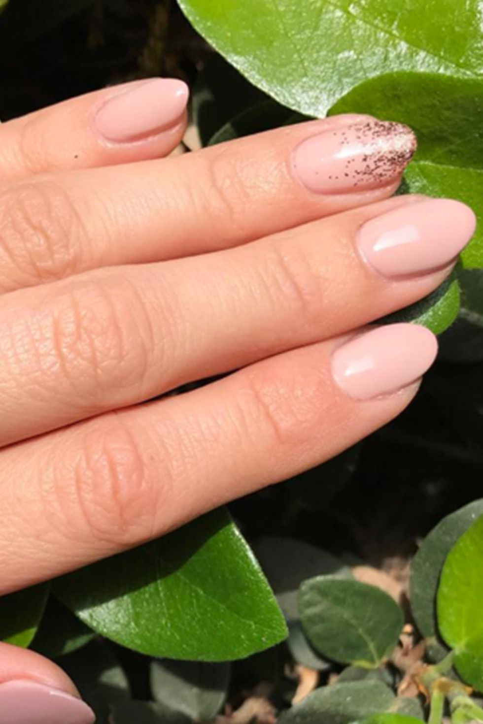 Accent Almond Shaped Nails-vvpretty